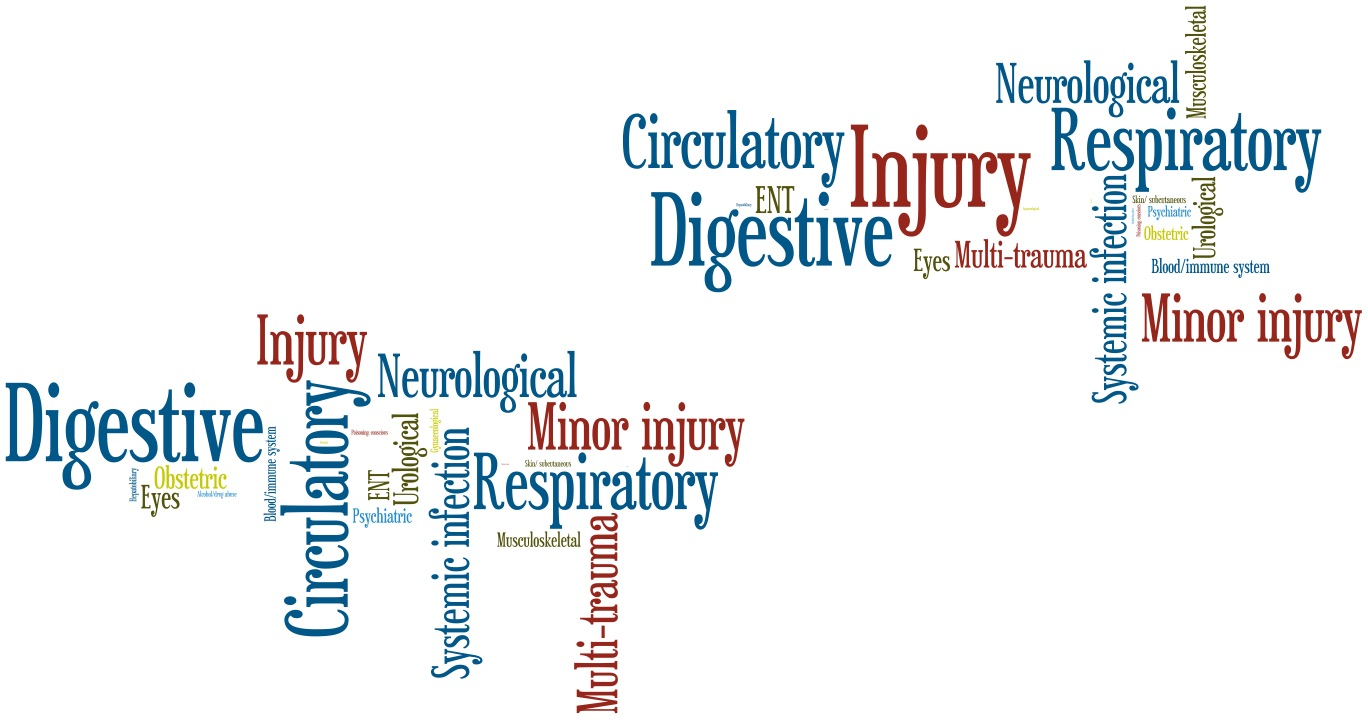 Rural Diagnosis wordle